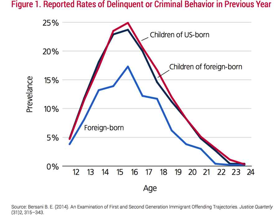 Chart showing lower crime rates committed by immigrants across the lifespan
